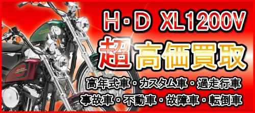 special_xl1200v